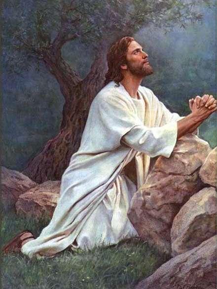 Agonía de Jesús en el Huerto de Getsemaní (Las Horas de la Pasión: Luisa Picarreta)