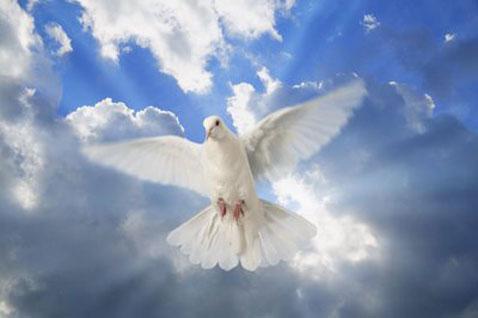 ¿Por qué se llama Espíritu a la Tercera Persona de la Santísima Trinidad?